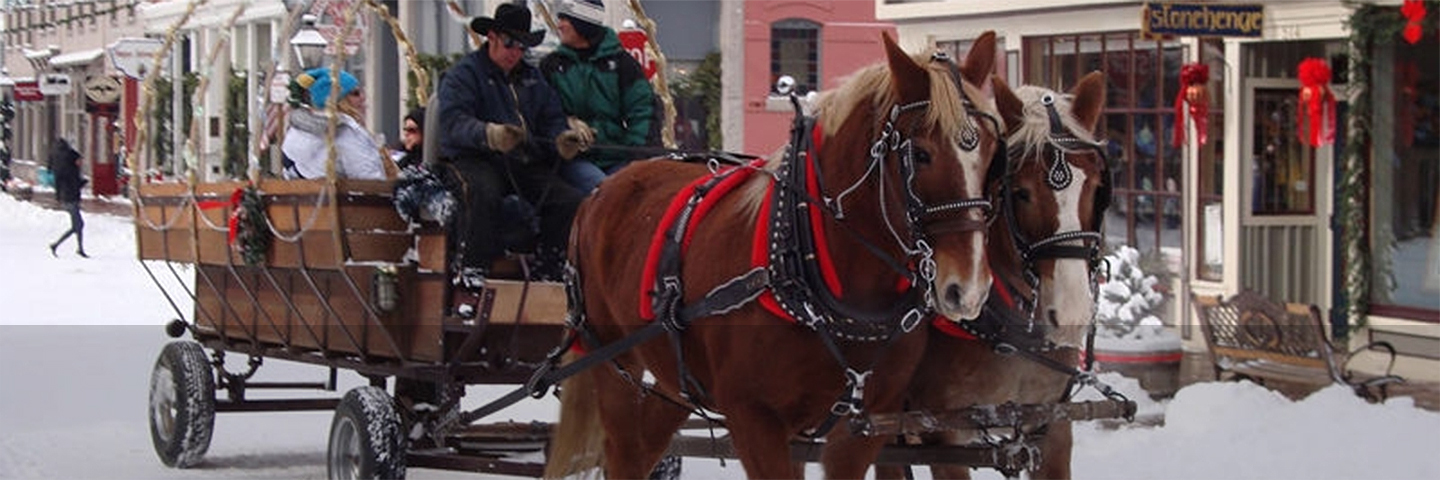 57th Annual Georgetown Christmas Market | AAA Colorado