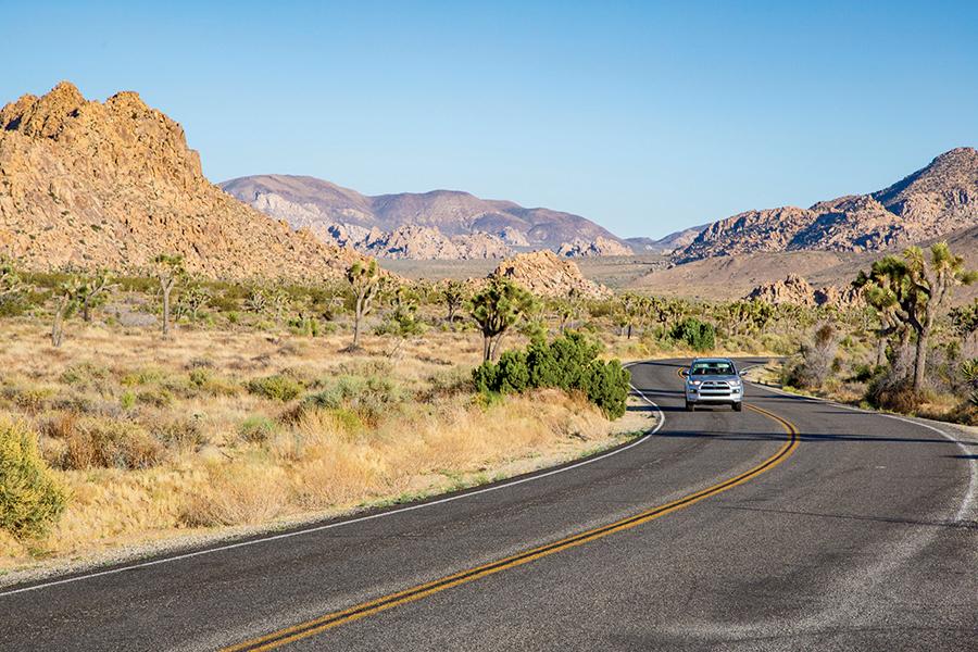 Three Days In: Coachella Valley