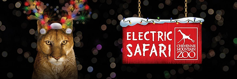 Electric Safari