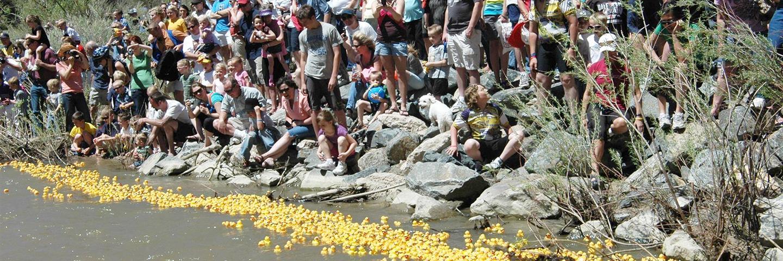 Castle Rock Rotary Ducky Derby