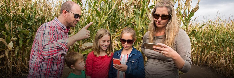 Corn Maze at Chatfield Farms