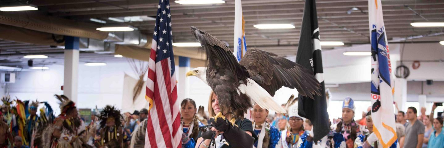 Colorado Springs Native American Intertribal Powwow